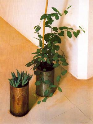 Claudio Bravo plantas